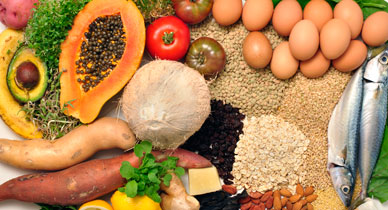 Ideal Diet for Diabetics