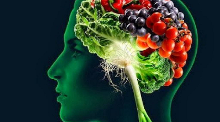 Good food for the development of your brain