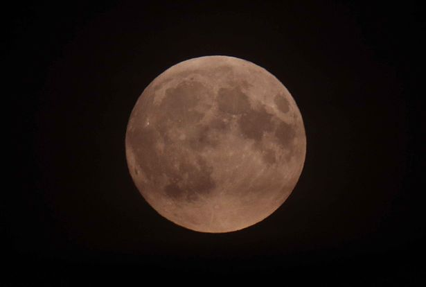 Bizarre Occurrences Occasioned by Full Moon