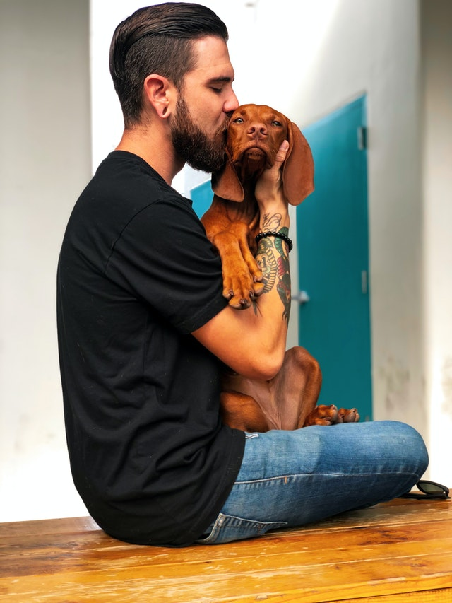Mind At Work: Why Dogs Are Good For Your Mental Health